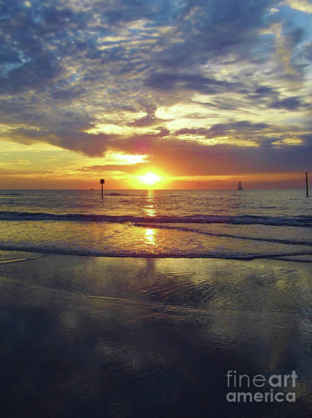 Photograph - Beauty At Clearwater by D Hackett