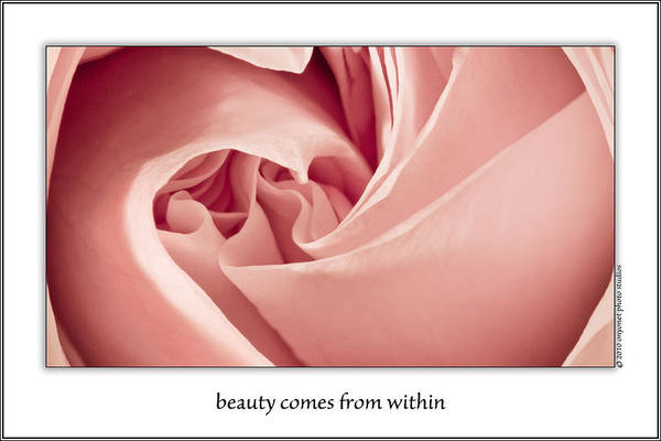 Photograph - Beauty Comes From Within by  Onyonet  Photo Studios