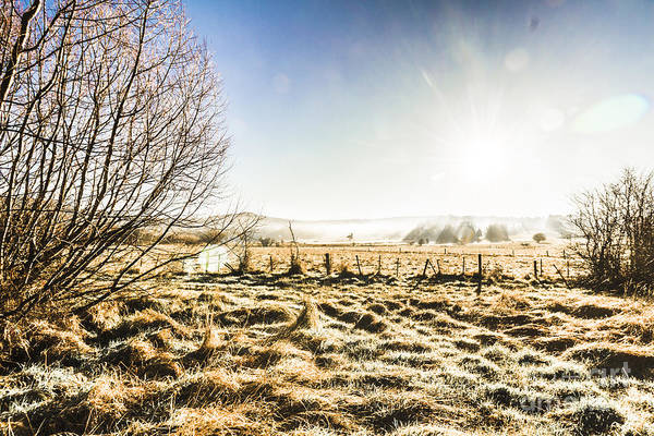 St. Marys Photograph - Beauty In Rural Winters by Jorgo Photography - Wall Art Gallery