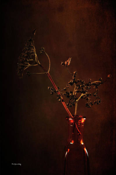Photograph - Beauty In Unexpected Places by Randi Grace Nilsberg