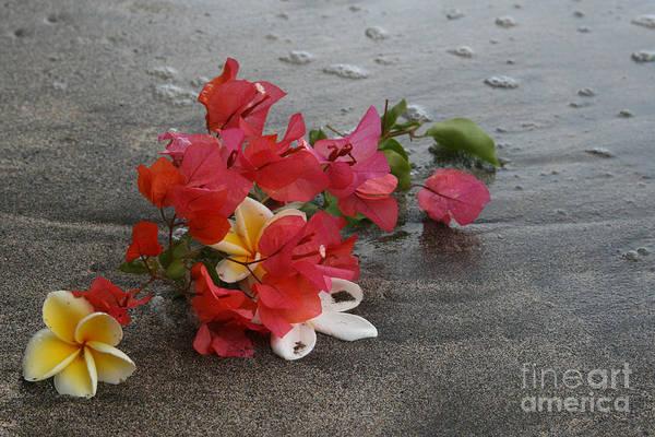 Photograph - Beauty Is Eternally Free by Sharon Mau