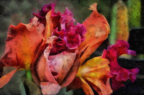 Mixed Media - Beauty Of An Orchid by Trish Tritz
