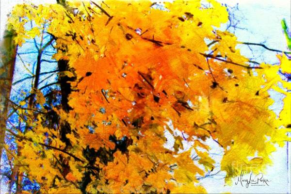 Painting - Beauty Of The Leaves by MaryLee Parker