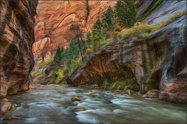 Photograph - Beauty Of The Narrows by Erika Fawcett