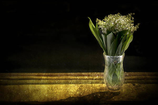 Vase Of Flowers Photograph - Beauty Of The Valley by Evelina Kremsdorf
