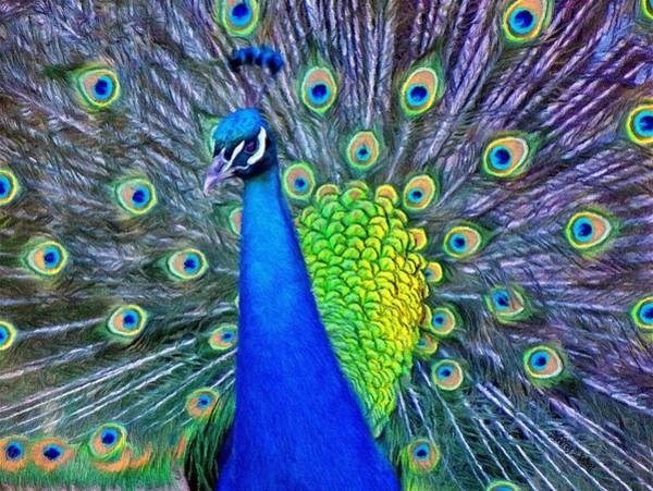 Peacocks Painting - Beauty Whatever The Name by Jeffrey Kolker