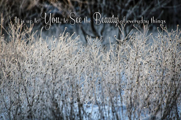 Photograph - Beauty You See by Christina VanGinkel