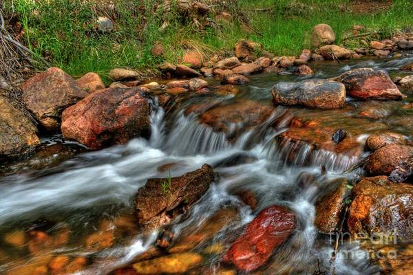 Photograph - Beaver Creek by Tony Baca