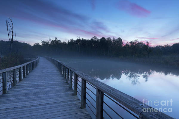 Photograph - Beaver Marsh Dawn by Joshua Clark