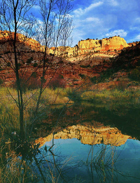 Wall Art - Photograph - Beaver Pond Calf Creek Canyon by Douglas Pulsipher
