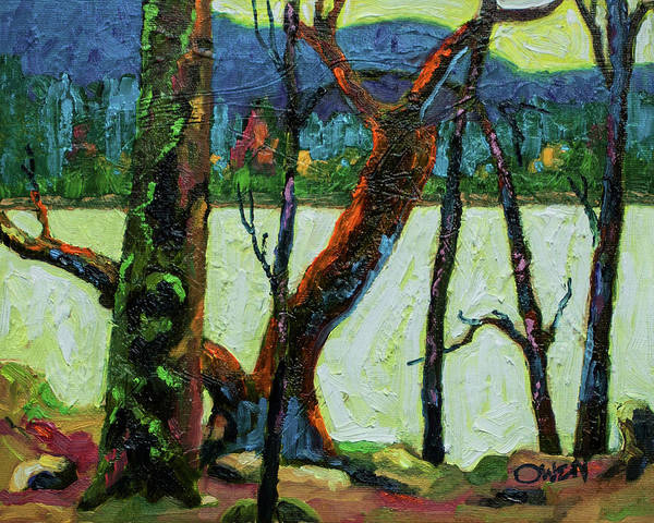 Painting - Becher Bay, Madrona And Yew by Rob Owen