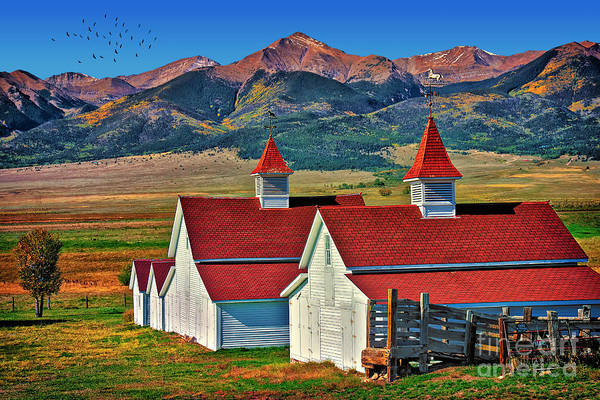 Westcliffe Photograph - Beckwith Ranch by Priscilla Burgers