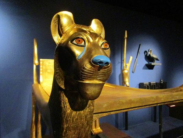 Photograph - Bed Of Tut by Rosita Larsson