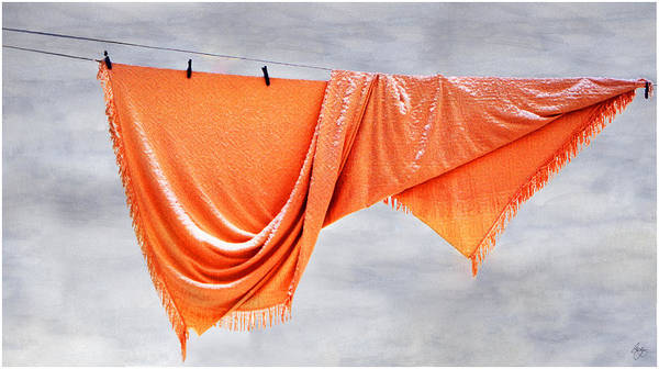 Photograph - Orange Bedspread In A Painted Sky by Wayne King