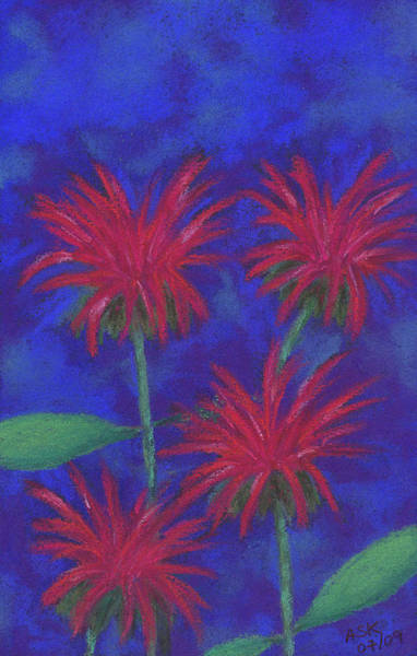 Pastel - Bee Balm Quad by Anne Katzeff