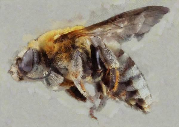 Lurksart Painting - Bee - Id 16217-152027-8392 by S Lurk