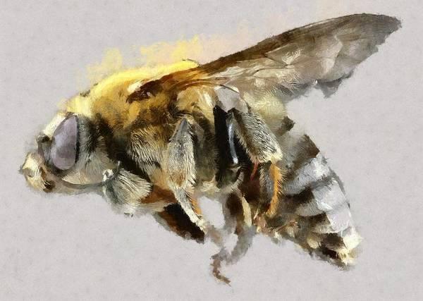 Lurksart Painting - Bee - Id 16217-152047-0467 by S Lurk