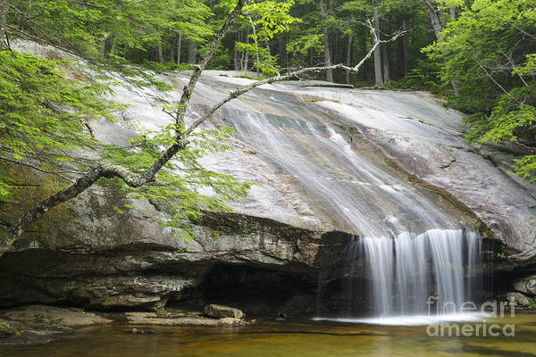 Photograph - Beede Falls - Bearcamp River New Hampshire by Erin Paul Donovan