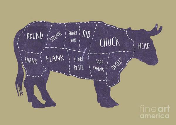 Drawing - Beef Cuts Butcher Print 5 by Edward Fielding