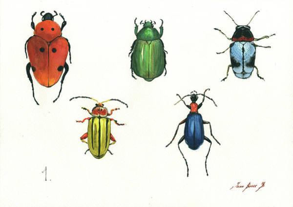 Wall Art - Painting - Beetles by Juan Bosco