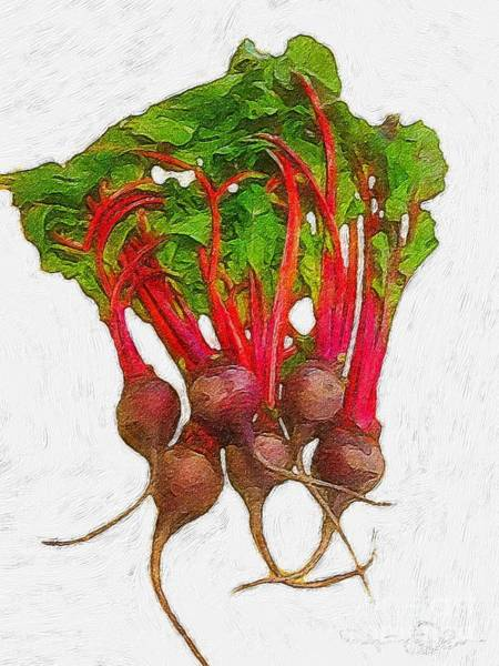 Painting - Beets by Lisa Owen-Lynch