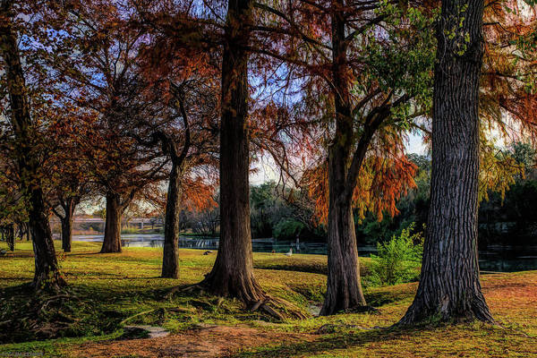 Photograph - Beginning Of Fall In Texas by Gaylon Yancy
