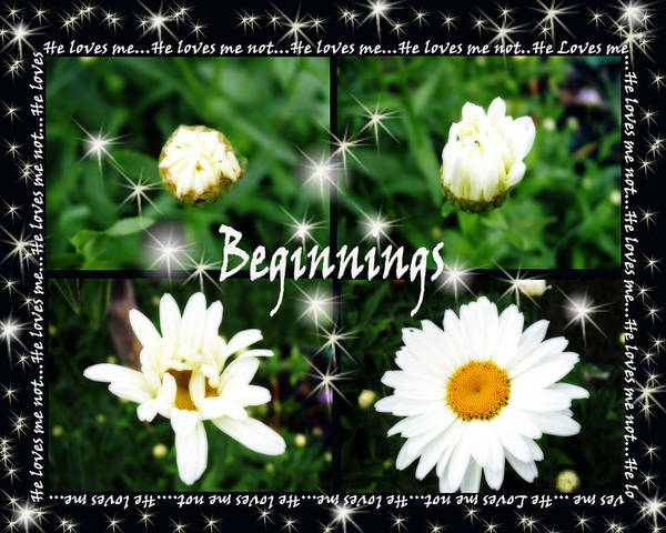 Photograph - Beginnings  by Cathy Beharriell