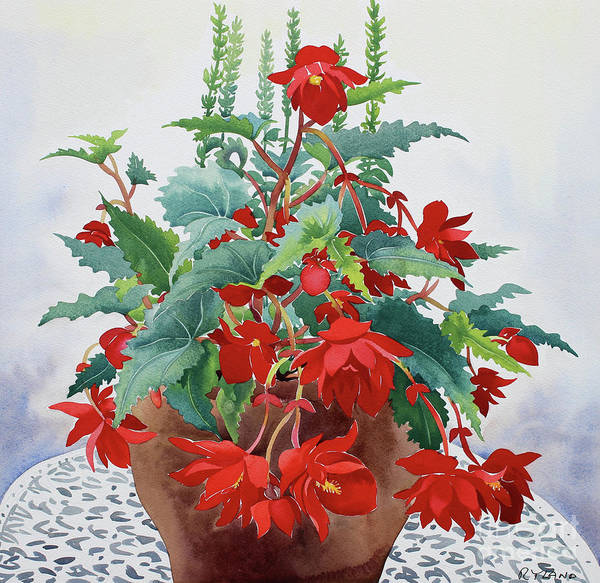 Potted Plant Painting - Begonia by Christopher Ryland