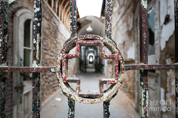 Wall Art - Photograph - Behind Bars by Michael Ver Sprill