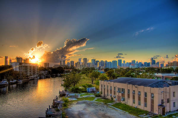Behind Miami Art Print by William Wetmore