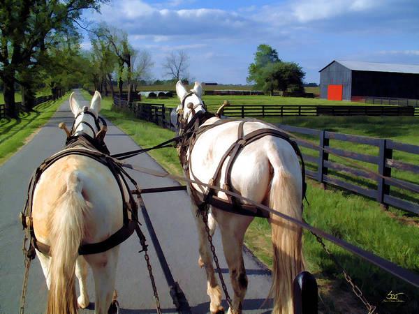 Photograph - Behind The Mules by Sam Davis Johnson