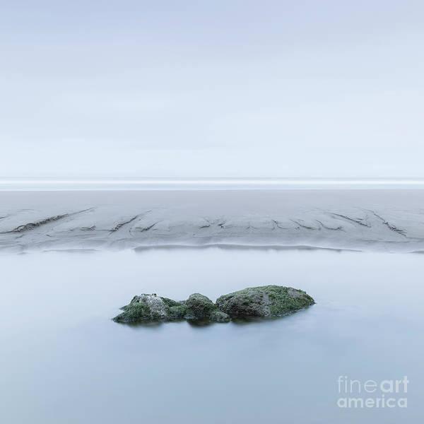 Wall Art - Photograph - Being Calm... by Masako Metz