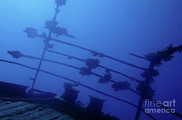 Wall Art - Photograph - Belama Shipwreck by Sami Sarkis