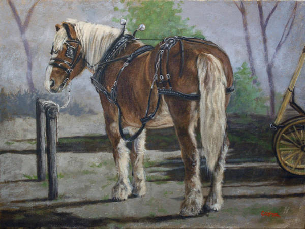 Painting - Belgian Charlie by Todd Cooper