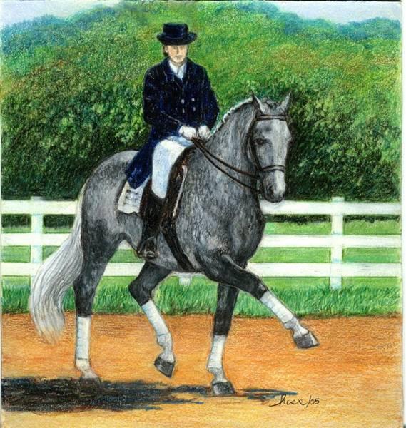 Warmbloods Drawing - Belgian Warmblood Dressage Horse by Olde Time  Mercantile