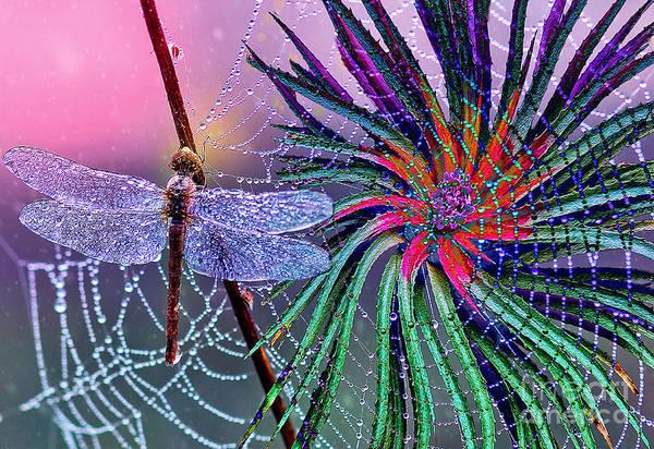 Essence Digital Art - Believe In Magic by Laurel D Rund