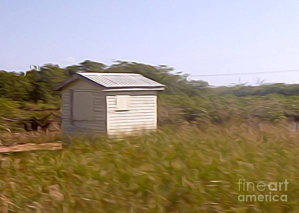 Belize Digital Art - Belize - Field Shack by Jason Freedman