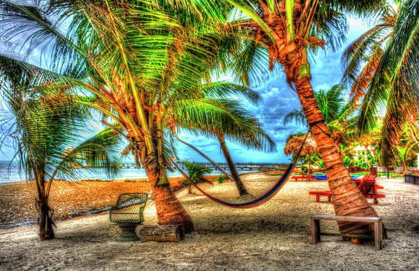 Ambergris Caye Photograph - Belize Hammock #1 by Jim Wagner