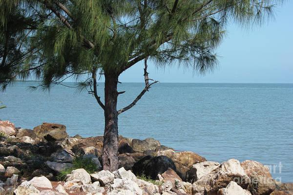 Photograph - Belize Ocean Front by Wilko Van de Kamp