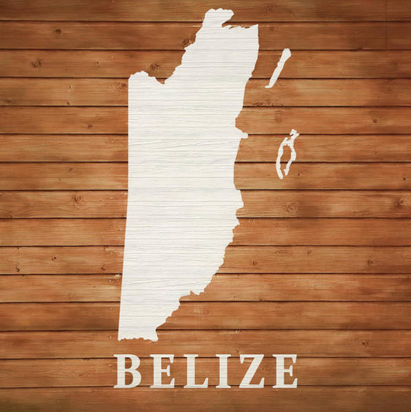 Traveler Mixed Media - Belize Rustic Map On Wood by Dan Sproul