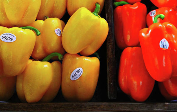 Photograph - Bell Peppers by Robert Knight