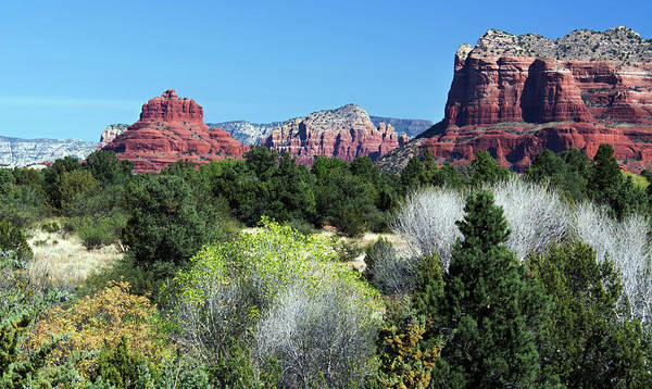 Photograph - Bell Rock View 7650-101717-2cr by Tam Ryan