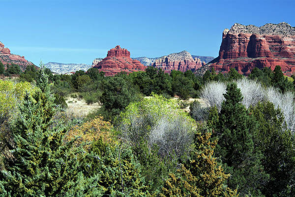 Photograph - Bell Rock View 7650-101717 by Tam Ryan