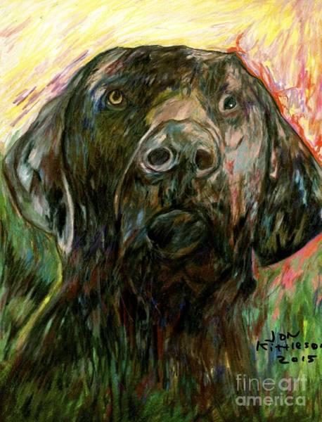 Drawing - Bella by Jon Kittleson