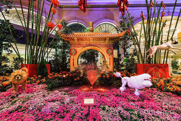 Chinese New Year Photograph - Bellagio Conservatory Chinese New Year Of The Dog Moon Gate by Aloha Art