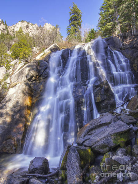 Photograph - Bells Canyon Waterfall by Spencer Baugh