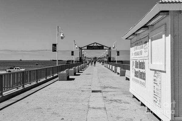 Wall Art - Photograph - Belmont Veterans Memorial Pier by Ana V Ramirez