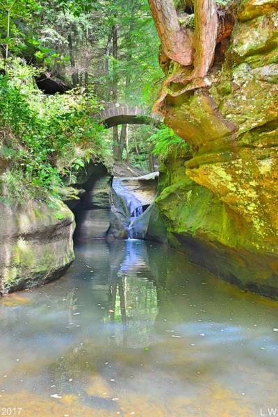 Photograph - Below Devil's Bathtub At Hocking Hills Ohio Vertical by Lisa Wooten