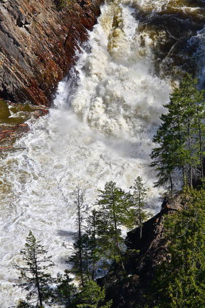 Photograph - Below The Dam by Diana Hatcher