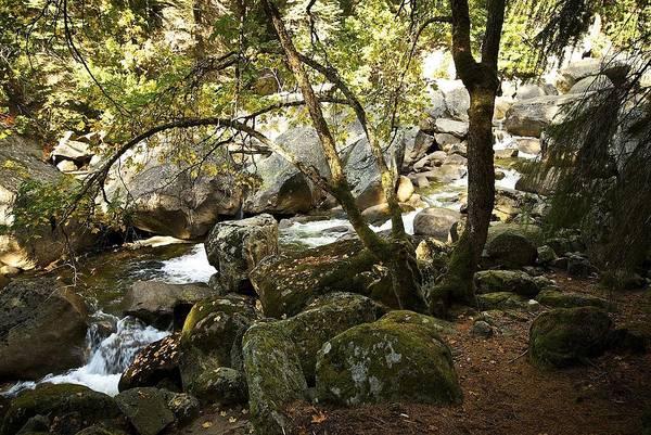 Vernal Fall Photograph - Below Vernal Falls  by Chris Brewington Photography LLC